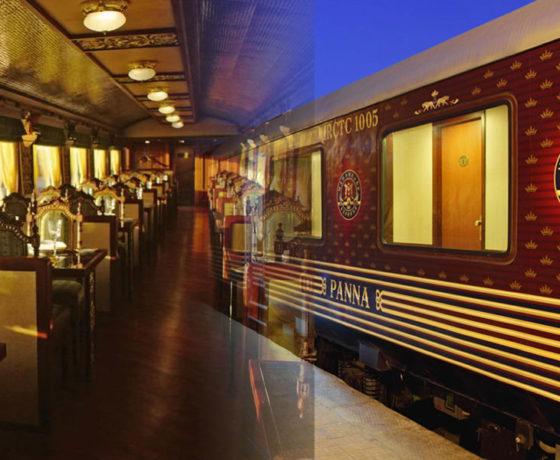 Gems of India Tour Maharaja Express