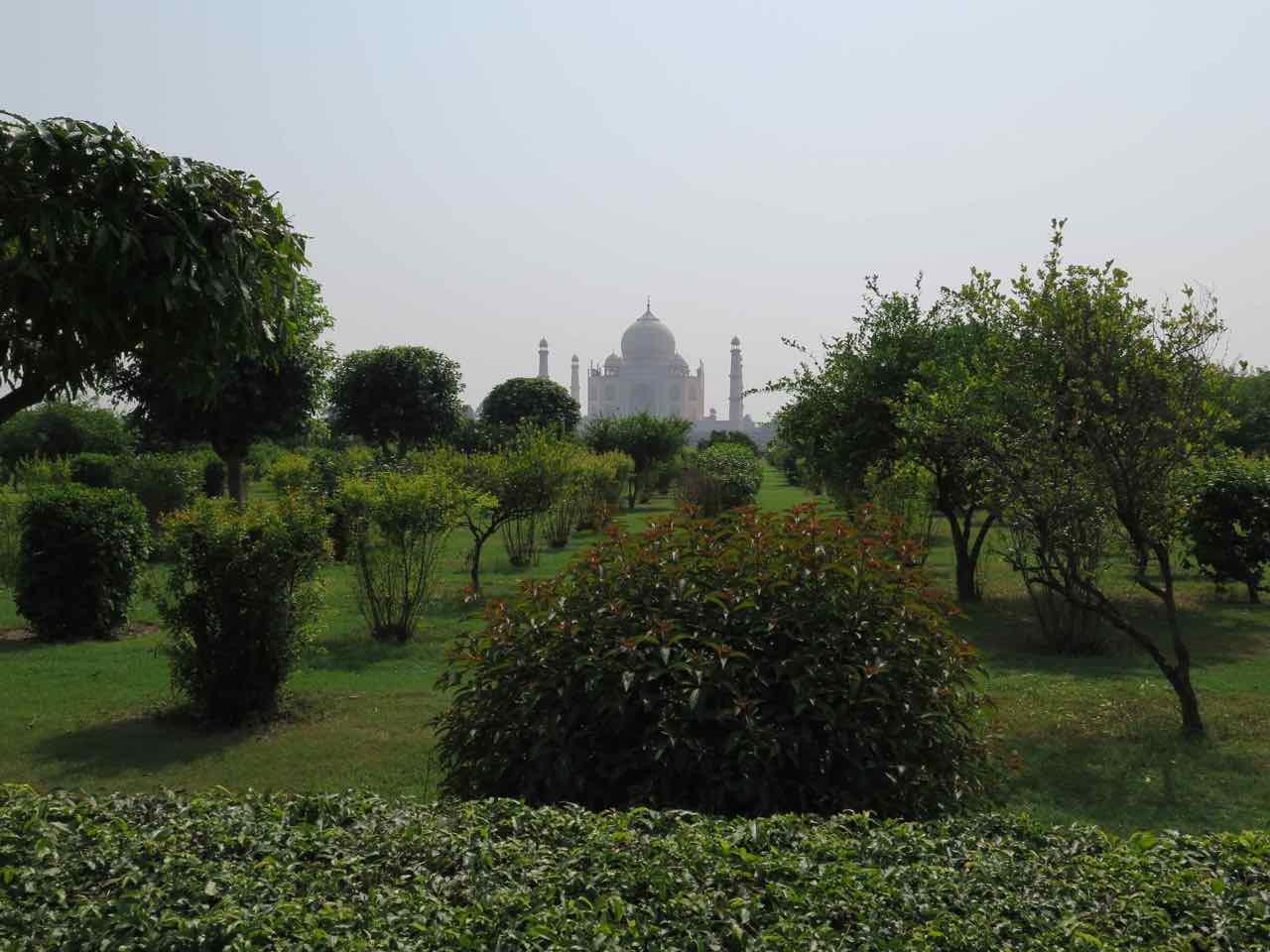 Mughal Garden Taj Mahal